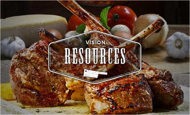 VIsion Grills - Grilling Resources