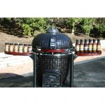 Vision Grill with BBQ Sauces and Dry Rubs